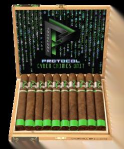 Protocol - Cyber Crimes - Churchill