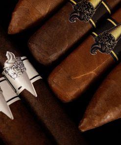 LCA Rare Exclusive - ICE CREAM - Chocoate Swirl